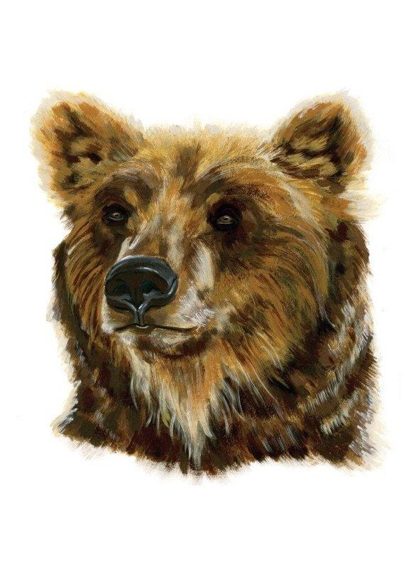 Honeybee Books - Bear portfolio